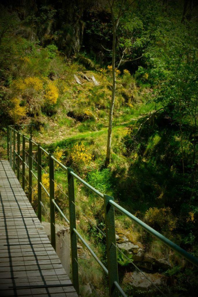 sentiers de randonnées - sentier de l'eau et de la force